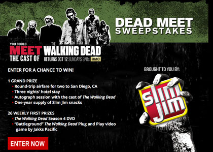 meet the cast of walking dead 2015 contest